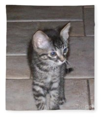 Martius Kitten Fleece Blanket