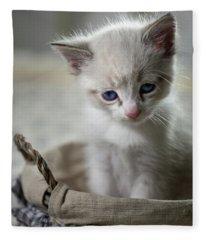 Kitty Cat Fleece Blanket