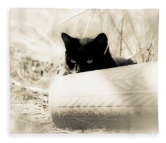 Kitty Stalks In Sepia Fleece Blanket