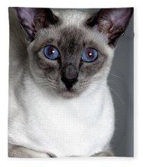 Kitty Stares Fleece Blanket
