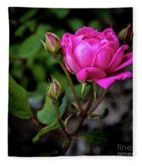 Knockout Rose Fleece Blanket