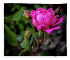 Knockout Rose Fleece Blanket