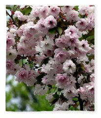 Japanese Cherry Tree Blossoms Highland Park Rochester Ny Watercolor Effect Fleece Blanket