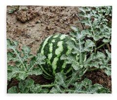 Ky Watermelon Fleece Blanket