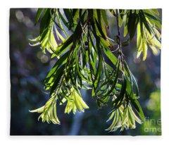 Lacey Leaves Fleece Blanket