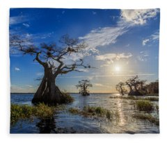 Lake Disston Cypress Paradise Fleece Blanket