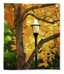 Lamp In Lithia Park Fleece Blanket