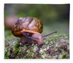 Land Snail II Fleece Blanket