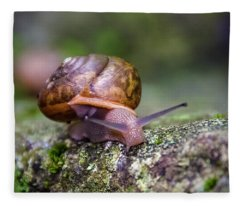 Land Snail II Fleece Blanket