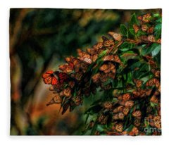 Landing At The Monarch Grove Sanctuary Fleece Blanket
