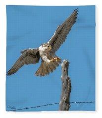Landing Prairie Falcon Fleece Blanket