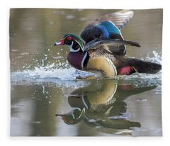 Landing Wood Duck  Fleece Blanket