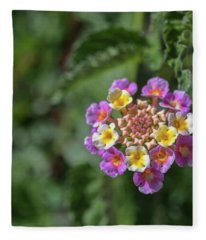 Lantana In Bloom Fleece Blanket