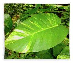 Large Leaf Fleece Blanket