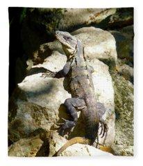 Large Lizard M Fleece Blanket