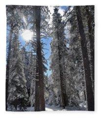 Lassen National Forest Fleece Blanket