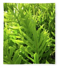 Lauae Fern Fleece Blanket