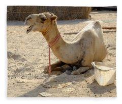 Camel Laughing Fleece Blanket