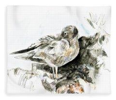 Lava Gull Fleece Blanket