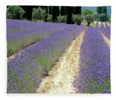 Lavender Heaven Fleece Blanket