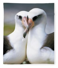 Laysan Albatross Phoebastria Fleece Blanket
