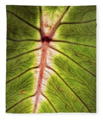 Leaf With Veins Fleece Blanket