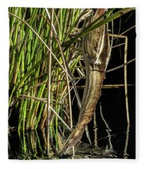 Least Bittern 1754-111817-1cr Fleece Blanket