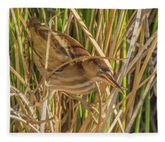 Least Bittern 1794-111817-1cr Fleece Blanket