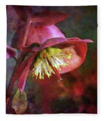 Lenten Rose Bowing To The Sun 8712 Idp_2 Fleece Blanket
