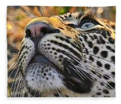 Leopard Aloft Fleece Blanket