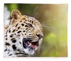 Leopard In Sunlight Fleece Blanket