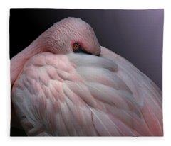 Lesser Flamingo Resting Fleece Blanket