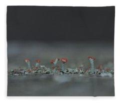 Lichen-scape Fleece Blanket