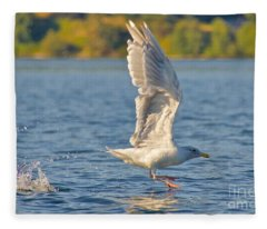 Liftoff Fleece Blanket