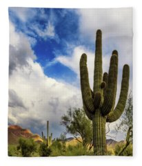 Fleece Blanket featuring the photograph Light And Shadow by Rick Furmanek