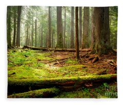 Light In The Forest Fleece Blanket