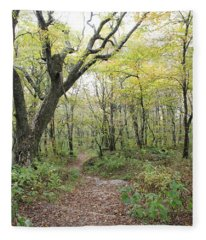 Light On Path Fleece Blanket