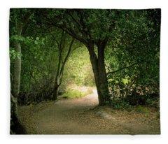 Light Through The Tree Tunnel Fleece Blanket