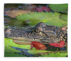 Lily Pad Gator Fleece Blanket