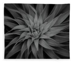Lily Swirl Fleece Blanket