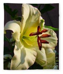 Lily's Morning Fleece Blanket