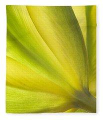 Lime Tulip Fleece Blanket