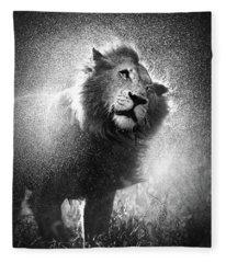 Lion Shaking Off Water Fleece Blanket