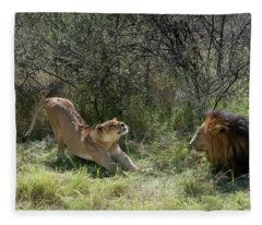 Lions Fleece Blanket