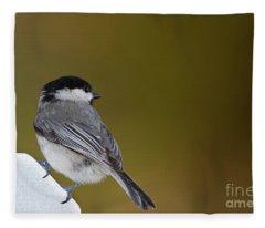 Little Chickadee Fleece Blanket