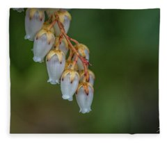 Little Crowns Fleece Blanket