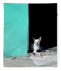 Little Dog In Doorway Havana Cuba Fleece Blanket