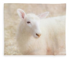 Little Lamb Fleece Blanket
