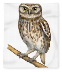 Little Owl Or Minerva's Owl Athene Noctua - Goddess Of Wisdom- Chouette Cheveche- Nationalpark Eifel Fleece Blanket