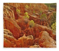 Little Pine Trees Growing On The Valley Cliffs Fleece Blanket